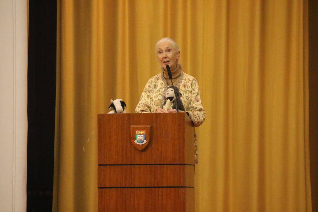 Jane Goodall delivering public lecture at HKU